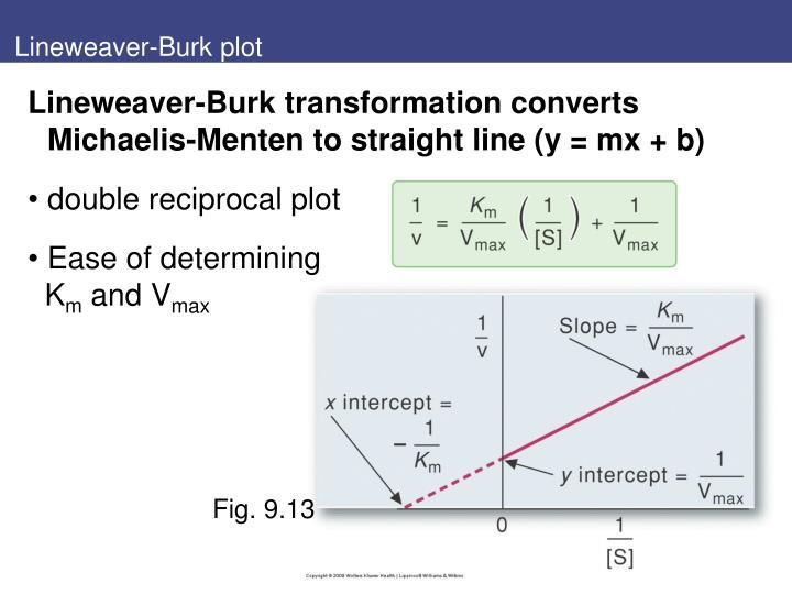 Lineweaver-Burk plot