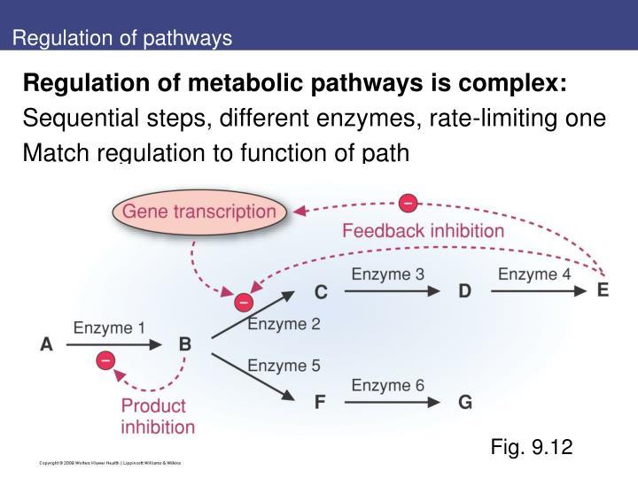 Regulation of pathways