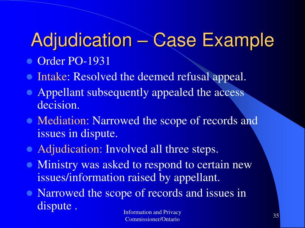 Adjudication – Case Example