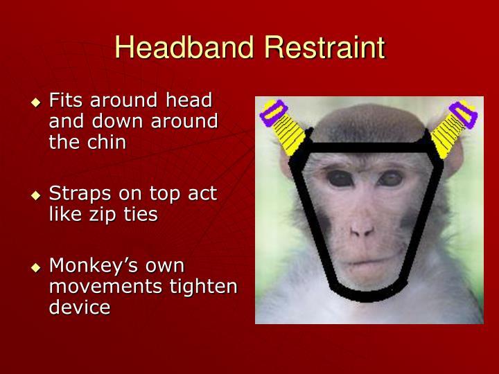 Headband Restraint