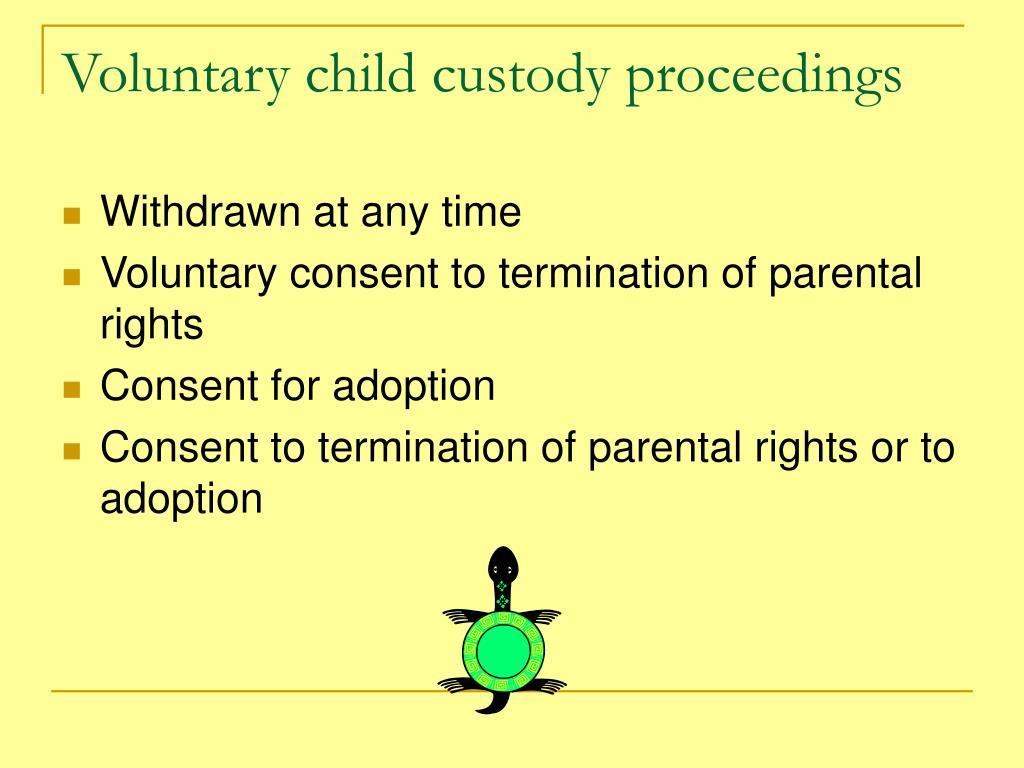 Voluntary child custody proceedings