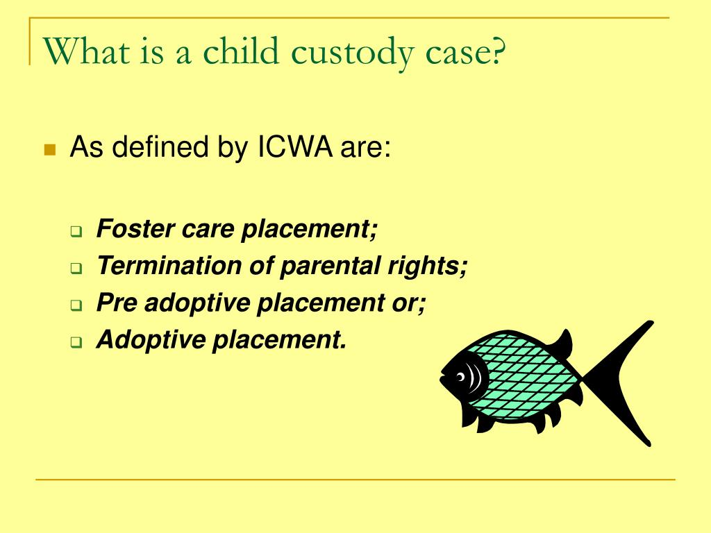 What is a child custody case?