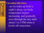 circadian rhythms2