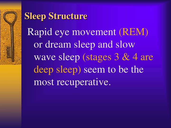 Sleep Structure