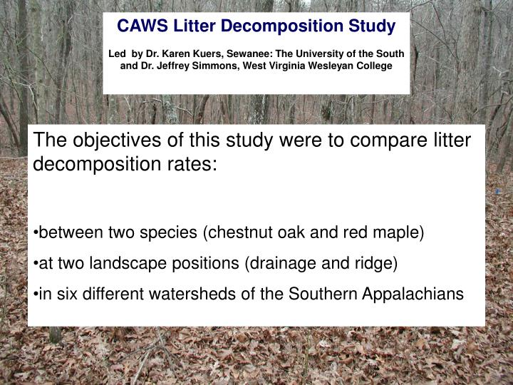 CAWS Litter Decomposition Study