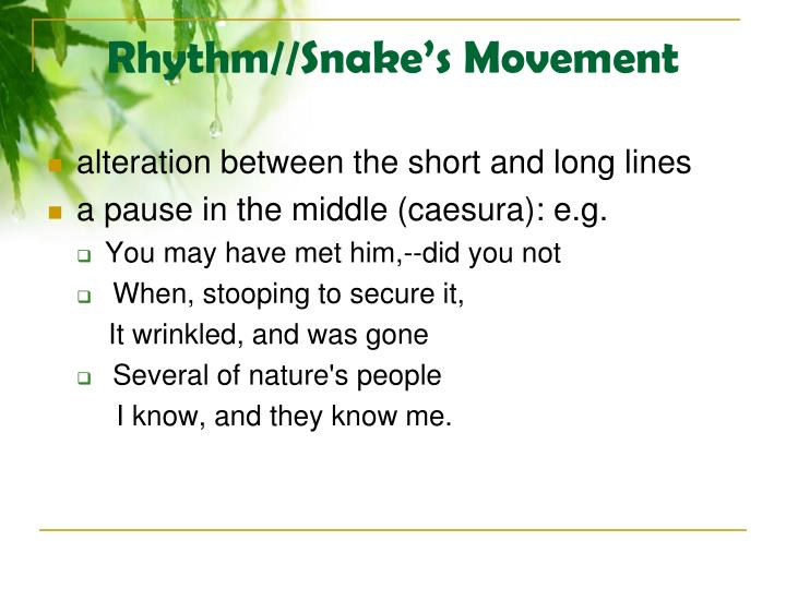Rhythm//Snake's Movement