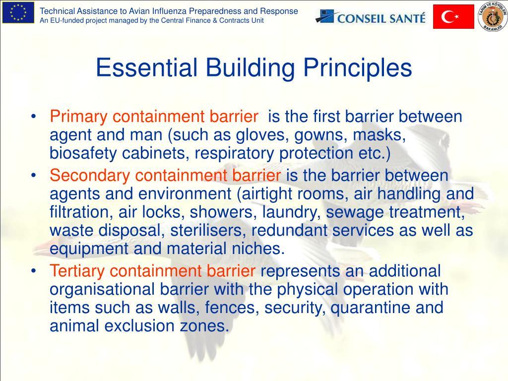 Essential Building Principles