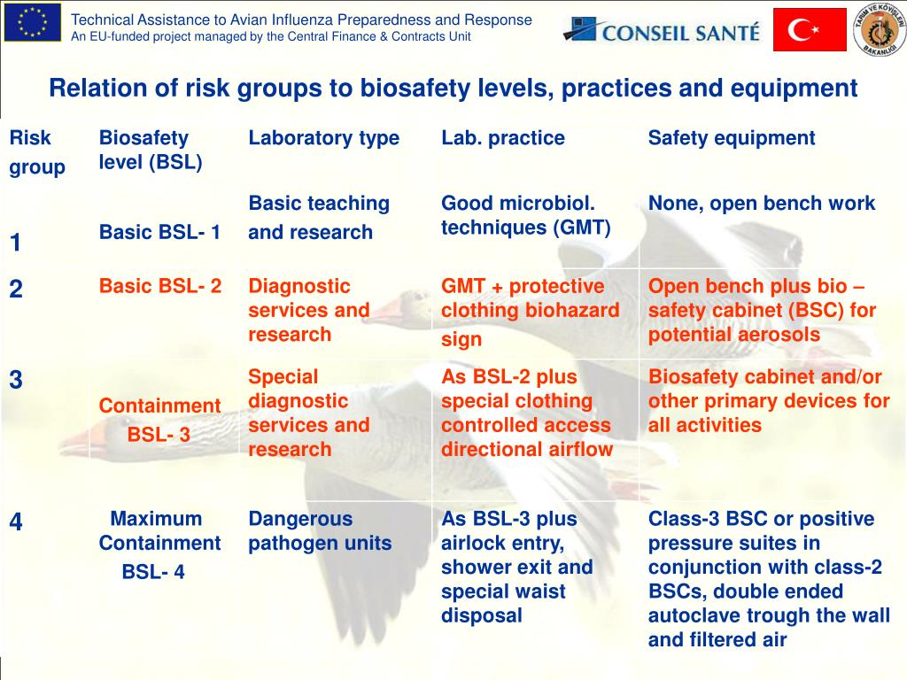 Relation of risk groups to biosafety levels, practices and equipment