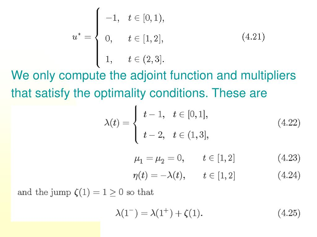 We only compute the adjoint function and multipliers