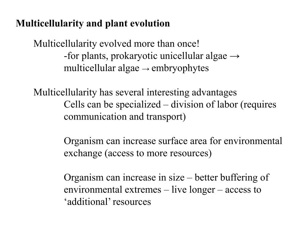 Multicellularity and plant evolution
