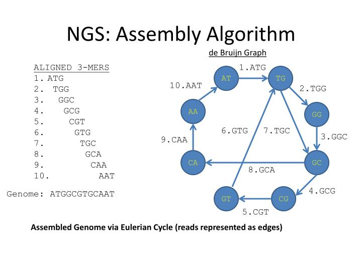 NGS: Assembly Algorithm