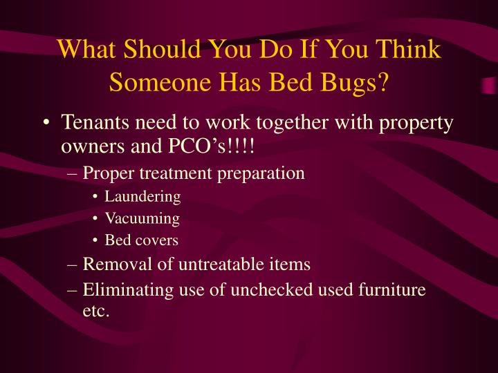 What Should You Do If You Think Someone Has Bed Bugs?