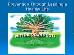 prevention through leading a healthy life