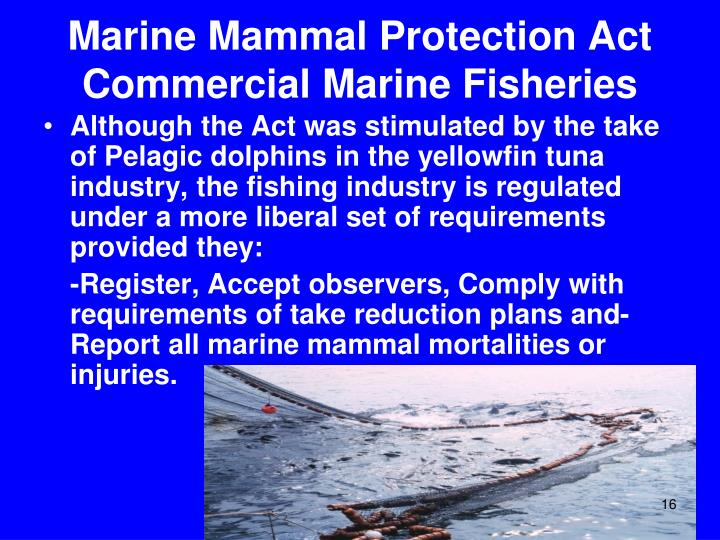 Marine Mammal Protection Act  Commercial Marine Fisheries