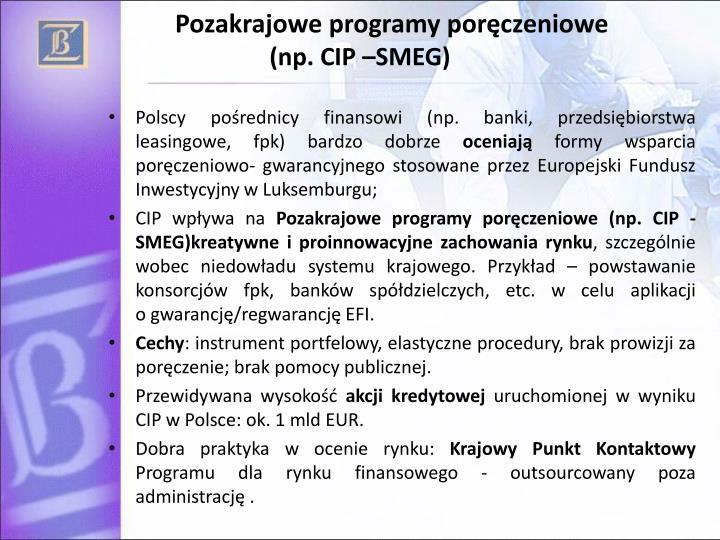 Pozakrajowe programy poręczeniowe