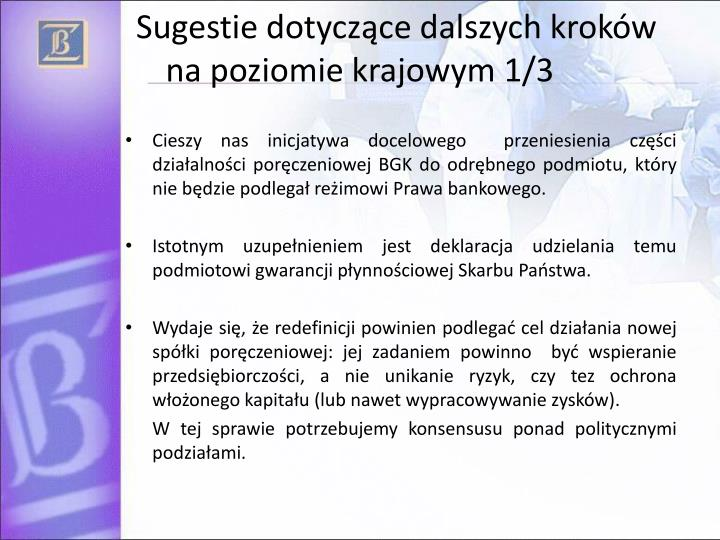 Sugestie dotyczące dalszych kroków na poziomie krajowym 1/3
