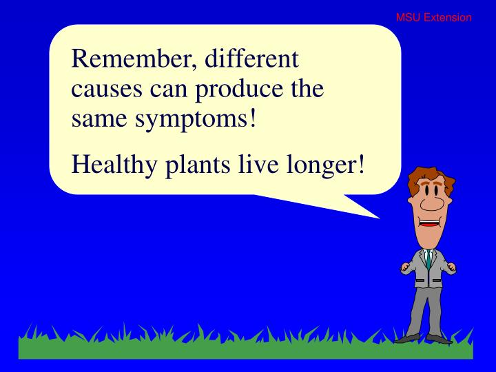 Remember, different causes can produce the same symptoms!