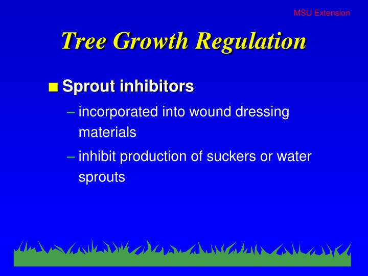 Tree Growth Regulation