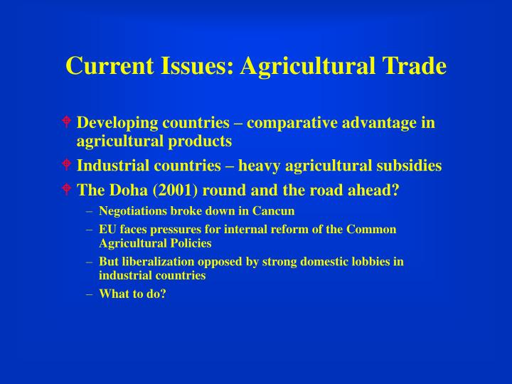 Current Issues: Agricultural Trade