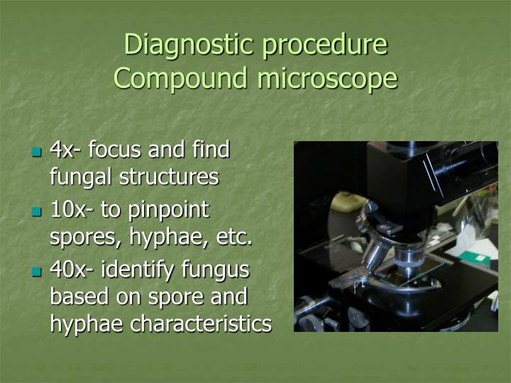 Diagnostic procedure