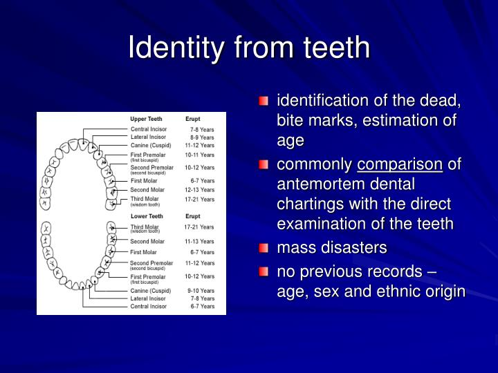 Identity from teeth
