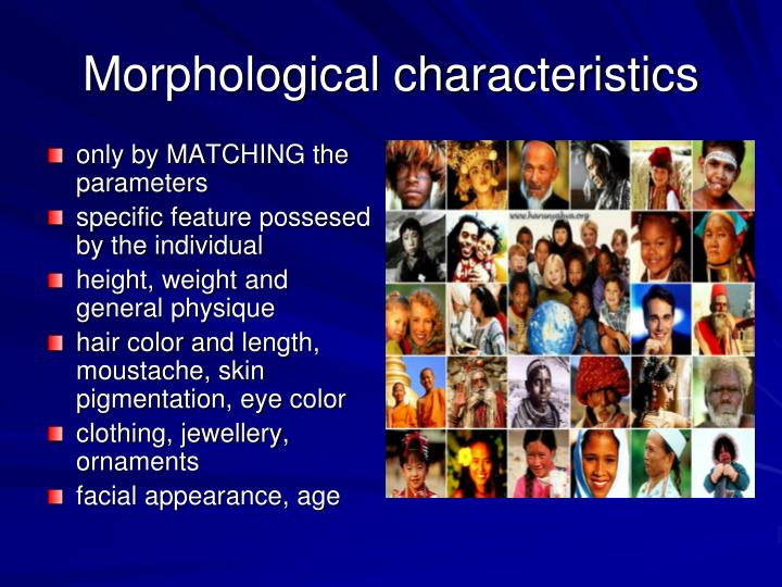 Morphological characteristics