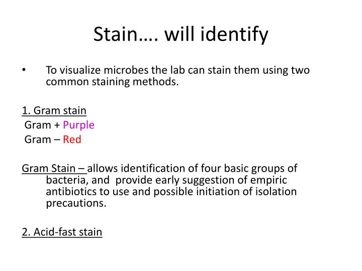 Stain…. will identify