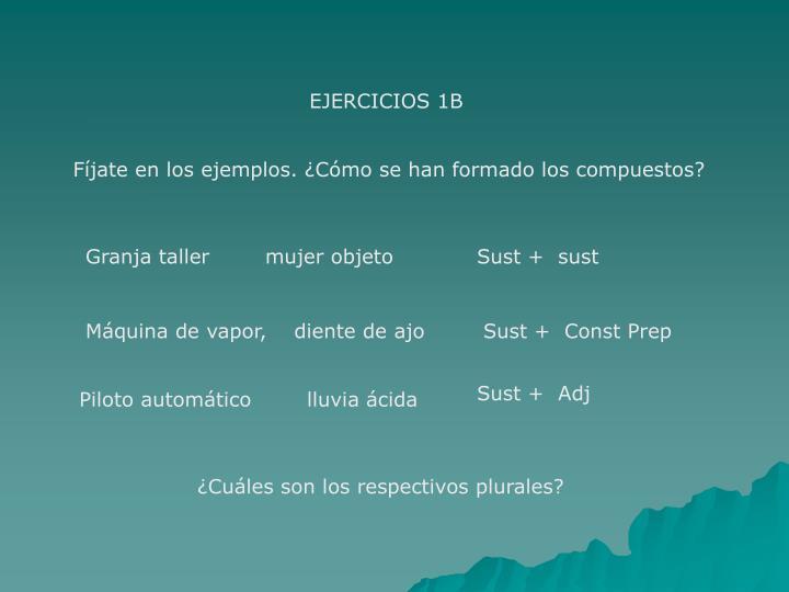 EJERCICIOS 1B