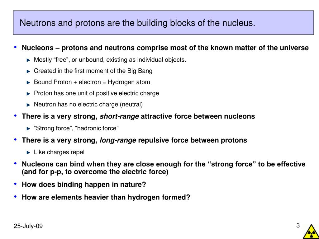Neutrons and protons are the building blocks of the nucleus.