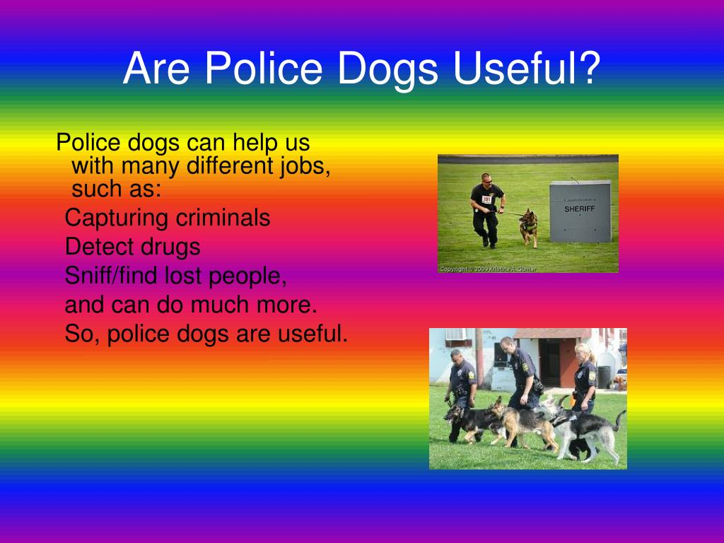 Are Police Dogs Useful?