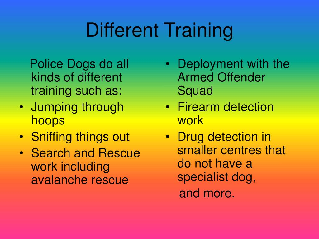 Police Dogs do all kinds of different training such as: