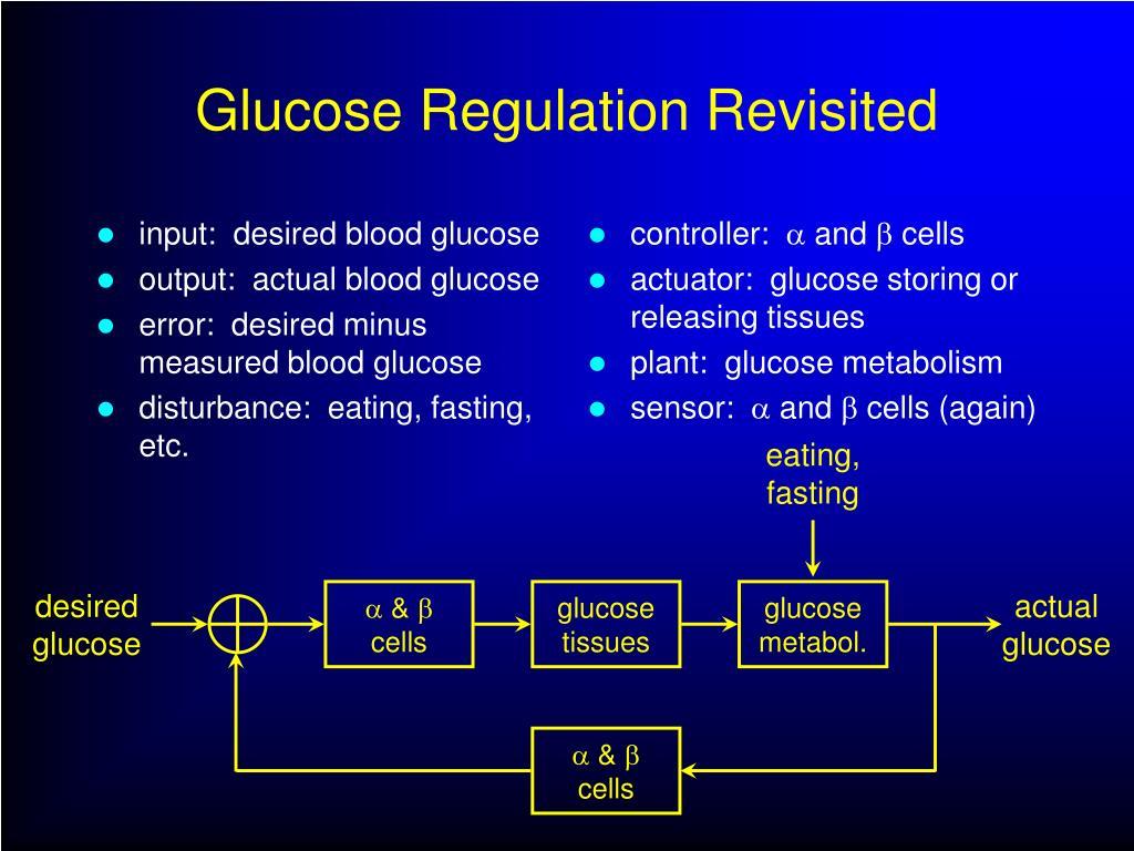 input:  desired blood glucose