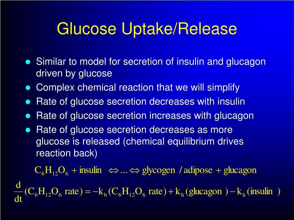 Glucose Uptake/Release