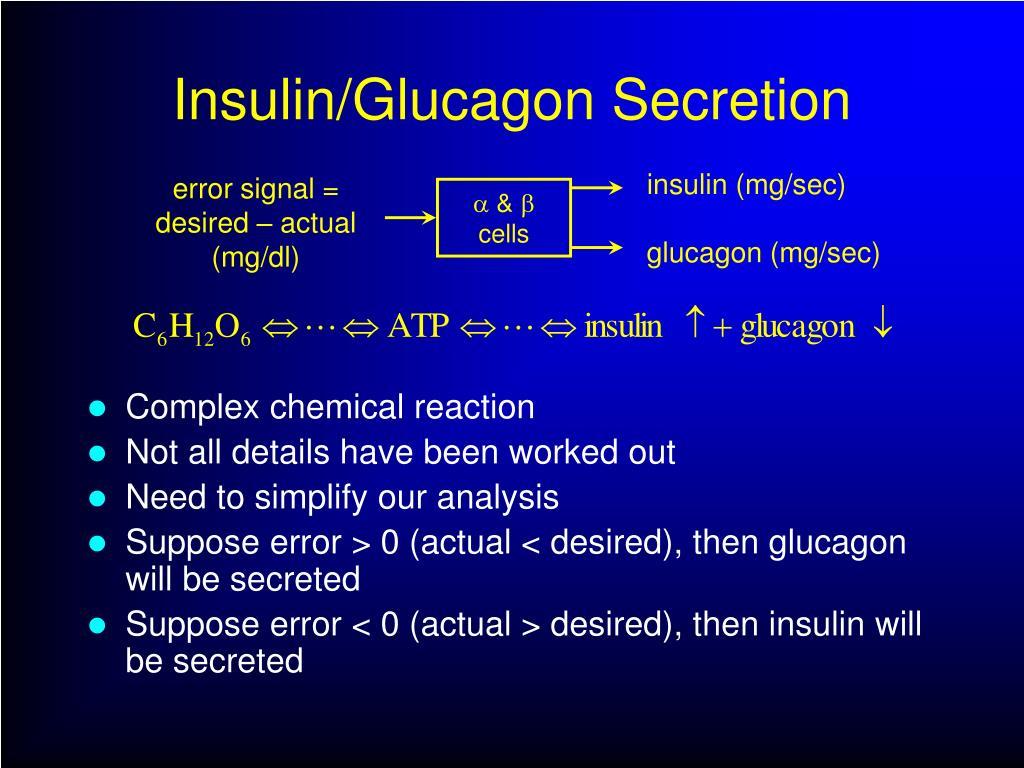 Insulin/Glucagon Secretion