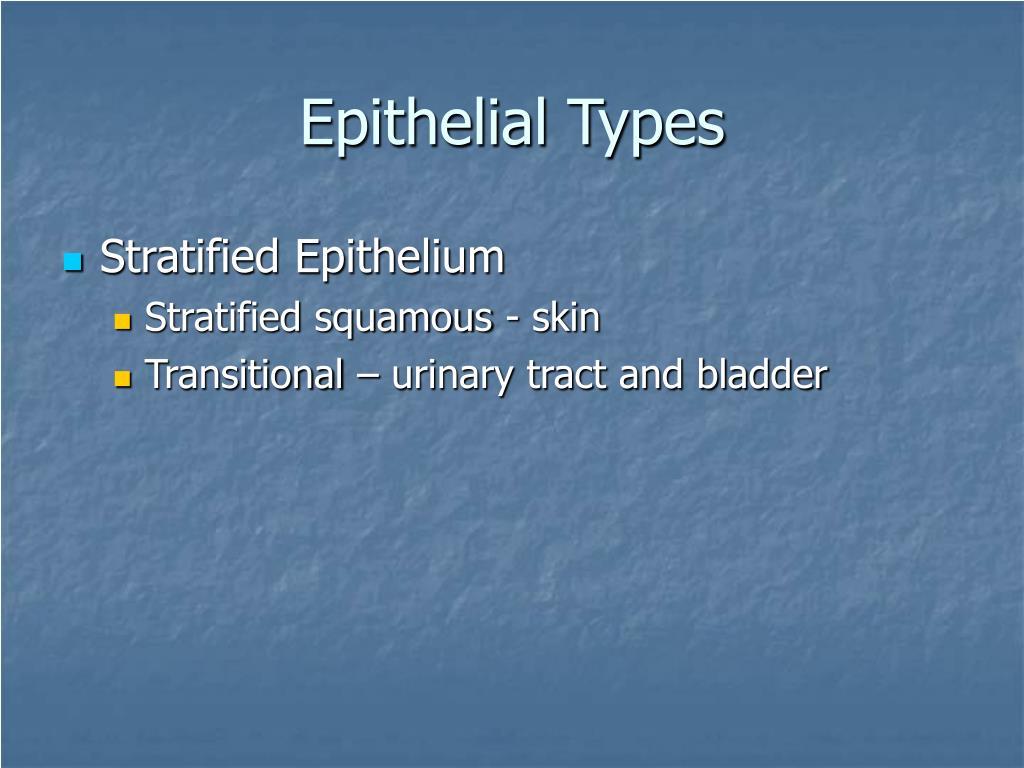 Epithelial Types