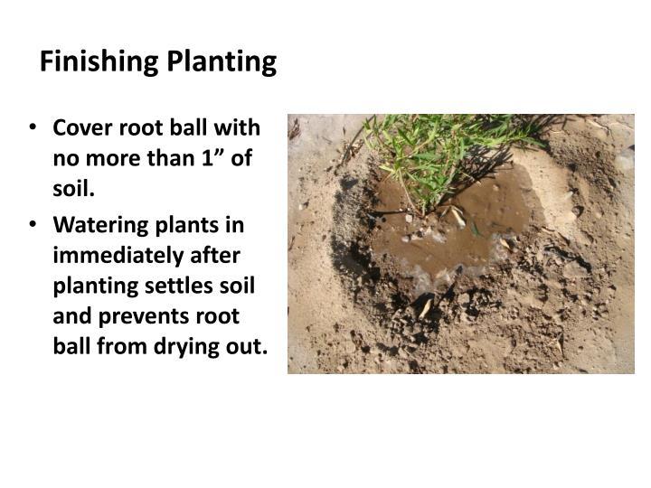 Finishing Planting