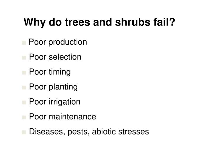 Why do trees and shrubs fail?