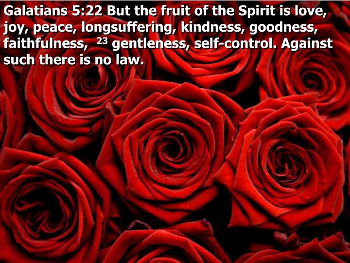 Galatians 5:22 But the fruit of the Spirit is love, joy, peace, longsuffering, kindness, goodness, faithfulness,