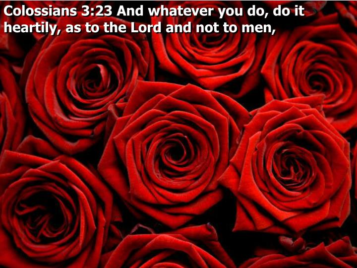Colossians 3:23 And whatever you do, do it heartily, as to the Lord and not to men,