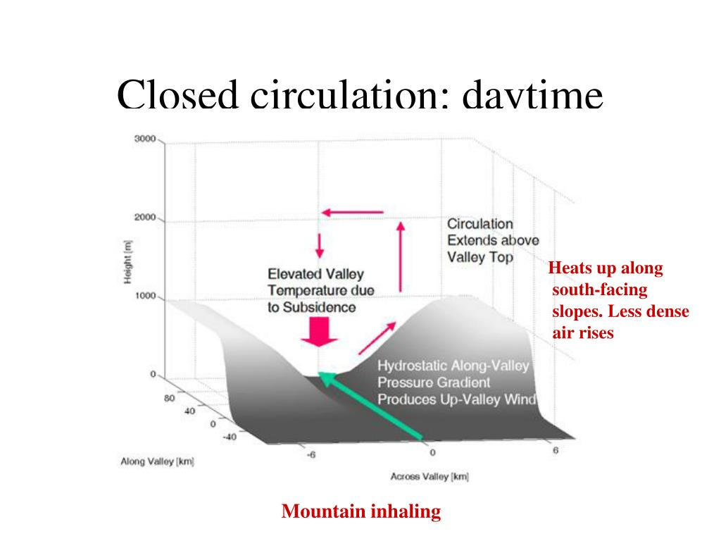 Closed circulation: daytime
