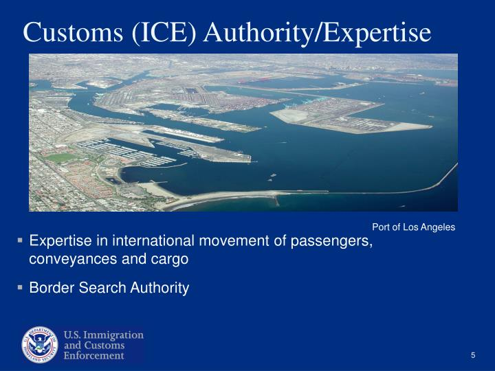 Customs (ICE) Authority/Expertise