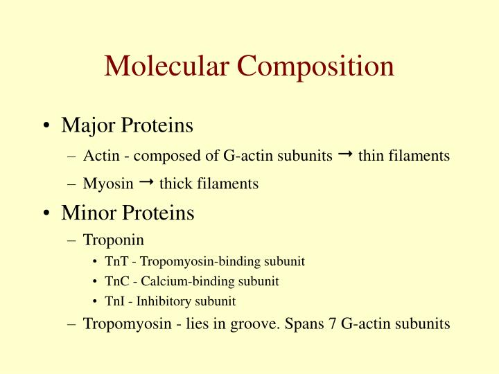 Molecular Composition