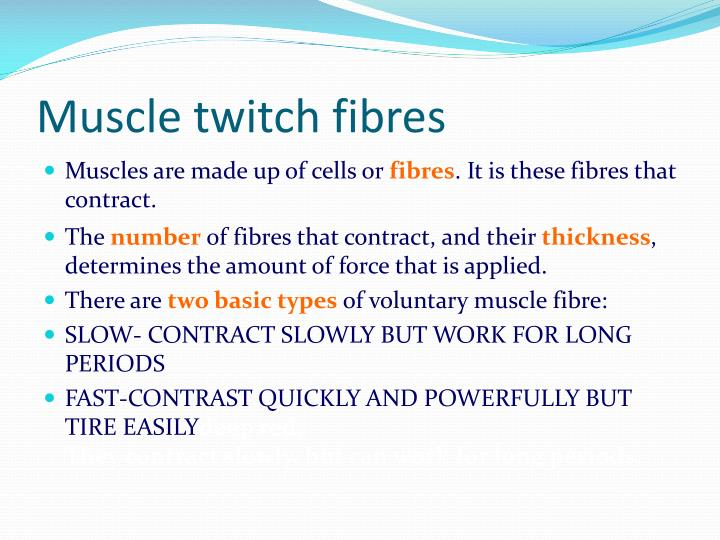 Muscle twitch fibres