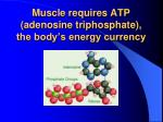muscle requires atp adenosine triphosphate the body s energy currency