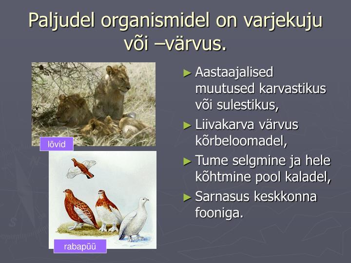 Paljudel organismidel on varjekuju või –värvus.