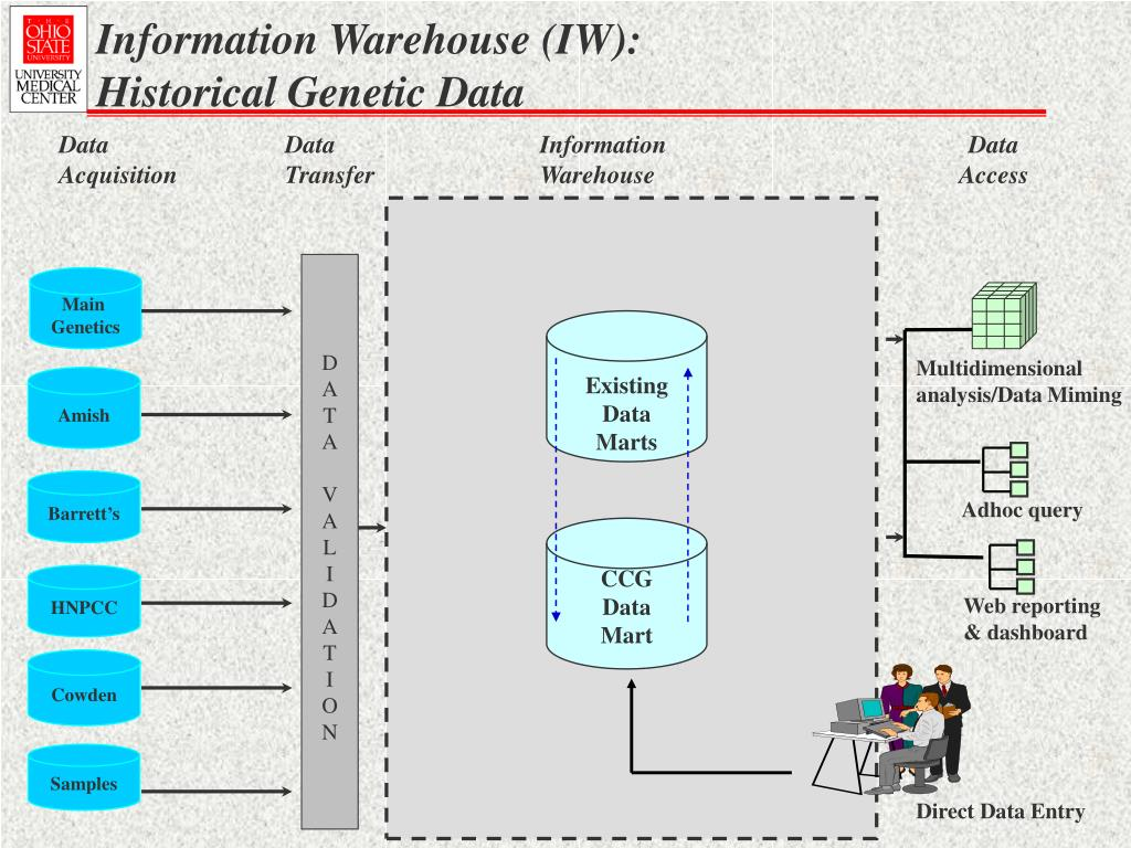 Information Warehouse (IW):