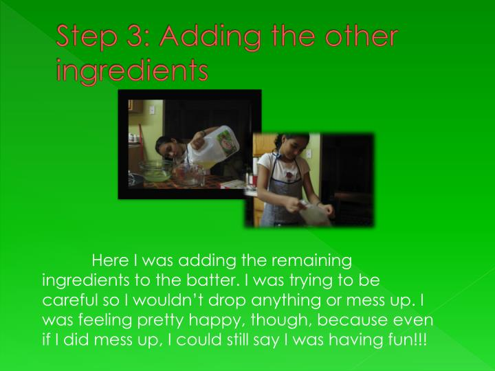 Step 3: Adding the other ingredients