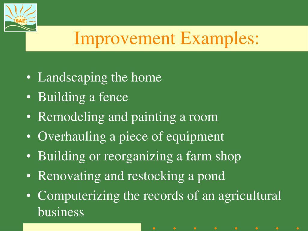 Improvement Examples:
