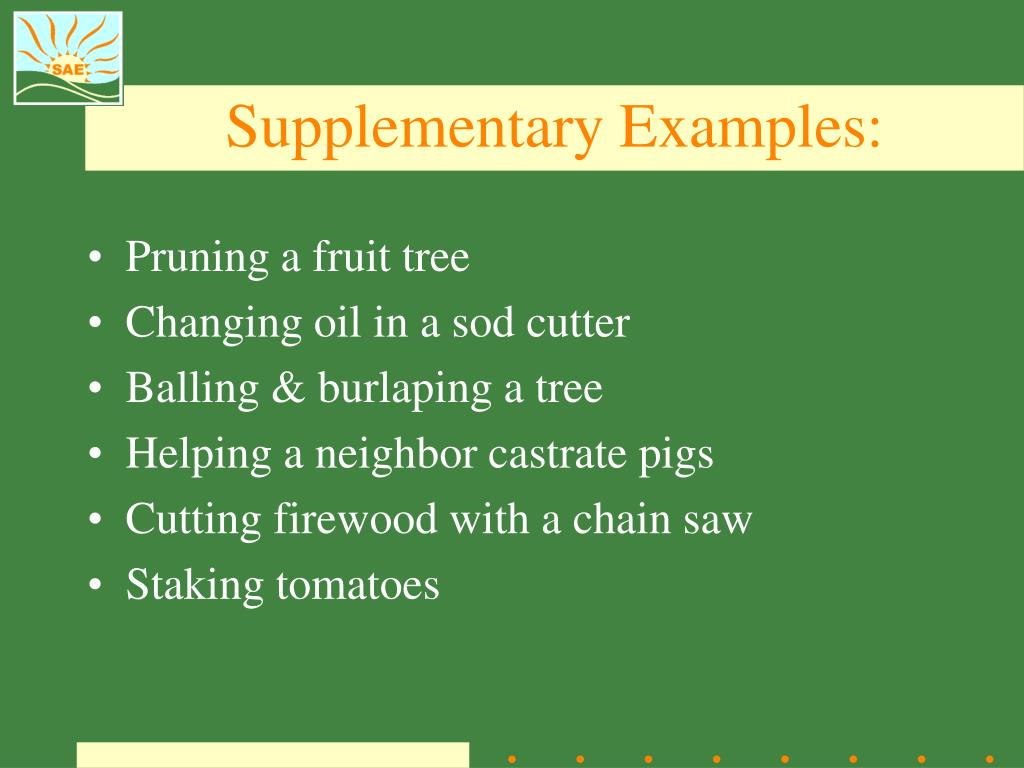 Supplementary Examples: