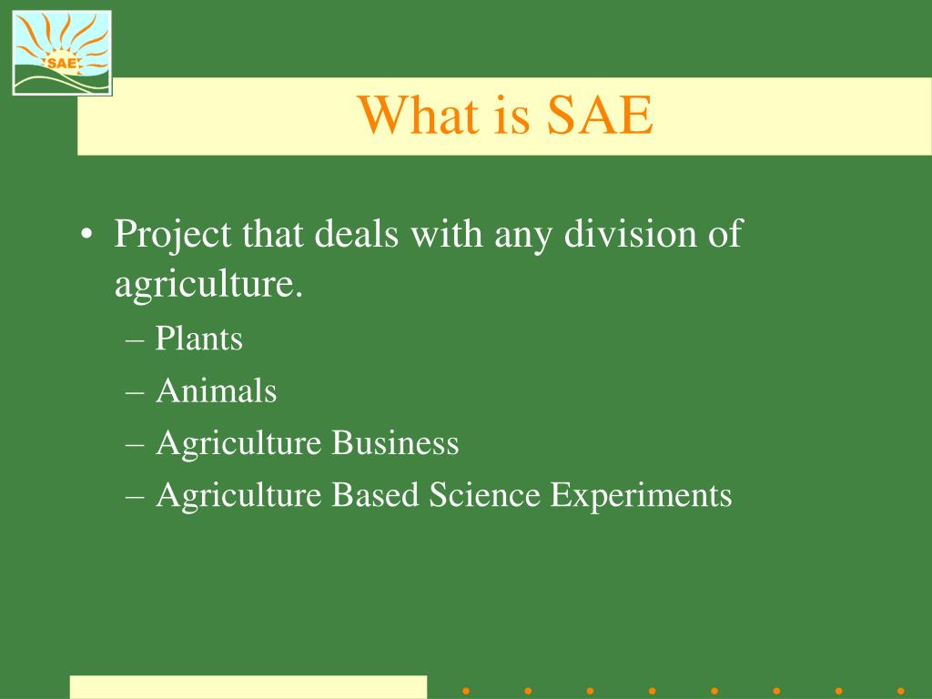 What is SAE